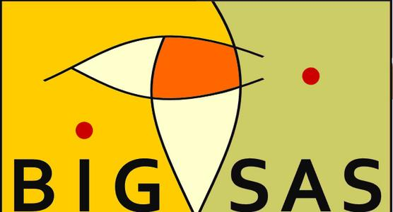 BIGSAS Logo