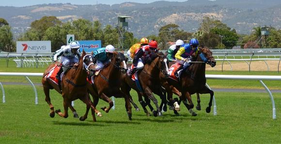 Auch für Anbieter von Wetten auf Pferderennen ist die Bet-Domain die Domain erster Wahl