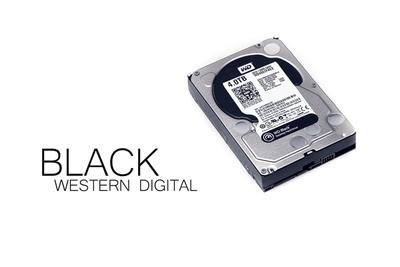 Western Digital Black WD4001FAEX 4 TB im Test