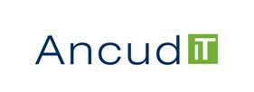 Ancud IT-Beratung Nürnberg