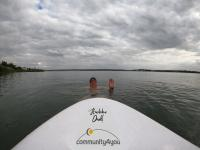 community4you sponsert das Rheinschwimmen 2022
