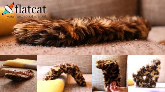 flatcat auf dem Sofa in verschiedenen Situation