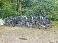 Wetterfest und sicher abgestellt – Fahrradständer 2021