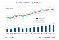 Tight supply of soybeans in 2019/20