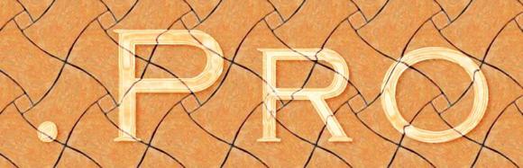Pro-Domains: Gut klingende Alternative für eine professionelle website