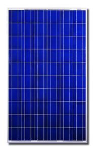 Das CS6P P Solarmodul von Canadian Solar