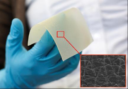 Das künstliche Hautmaterial wurde so optimiert, dass es als Ersatz für die Hände echter Probanden verwendet werden kann. ©Hohenstein Gruppe