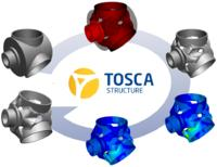 Optimization with TOSCA Structure