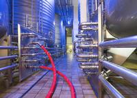 ContiTech's Purple Snake Ensures Safe and Hygienic Use in the Beverage Industry