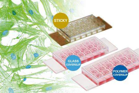 Discover 18 Wells for Cost-Effective Cell Culture and High-Resolution Microscopy