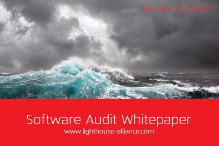 Software Audit Whitepaper