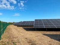 Solarpark Welgesheim produziert Strom für etwa 1.000 Haushalte. Im Frühjahr sät EnBW heimisches Saatgut für die Begrünung der Fläche ein / Foto: EnBW/HÖRMANN