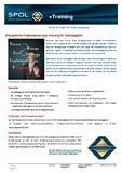 Flyer Managemementseminar für Auftraggeber