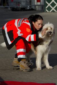 Isa Federer und ihr Rettungshund Amigo