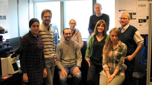The AFM-Super-Resolution Group led by Dr Frank Lafont (right)