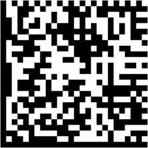 Beispiel eines Data- Matrix 2 D Barcodes