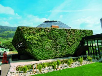 Blickfang und Ökologie in einem – der Fassadengarten von Optigrün / Foto: Optigrün