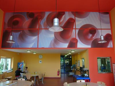 Die Caféteria des Herstellers von Dosier- und Zerstäuberpumpen für die Pharmazie Aeropump in Hochheim wurde mit bedruckten Capacoustic-Melapor-Elementen attraktiv gestaltet.