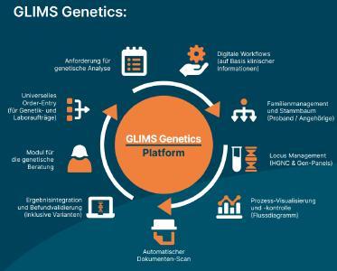 Workflow GLIMS Genetics Chart