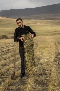 """Grass sods were harvested in the open countryside as """"turf rolls"""" and were used for green roofing. Source: Danil Kolodin / glaßer und dagenbach"""