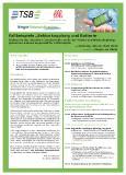 Flyer Seminar Sektorkopplung