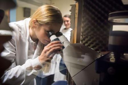 Louise Manson aus der Gruppe von Prof. Yin an der Universität Glasgow mit dem JPK NanoWizard® Rasterkraftmikroskop
